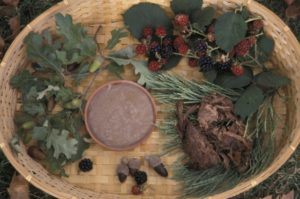 Traditional Foods of California Indians